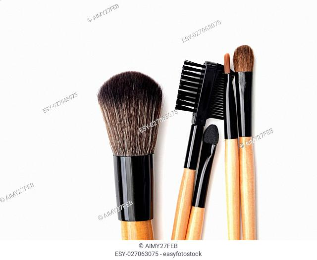 Professional make-up brush. collection of brushes on white background