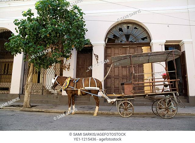 A taxi driver waiting patiently for passengers with his horse and cart on the streets of Cienfuegos, Cuba