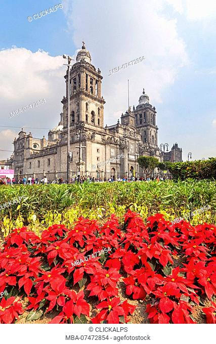 Metropolitan Cathedral in christmas time, Costitution Place, Mexico City, Mexico