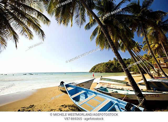 Charming fishing village near Englishman's Bay on the Caribbean side of Tobago NR