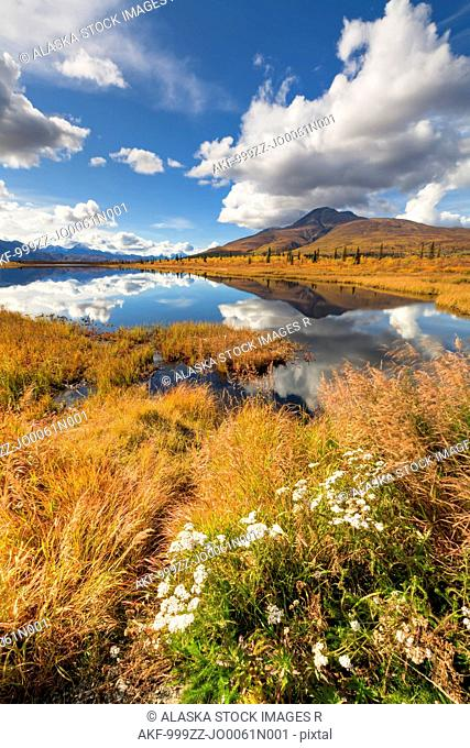 Scenic of foliage and Knob Lake along Alascom Road near Sheep Mountain and the Glenn Highway, Southcentral Alaska, Autumn, HDR