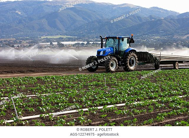 Hauling new irrigation pipes to the fields; Salinas, California, United States of America