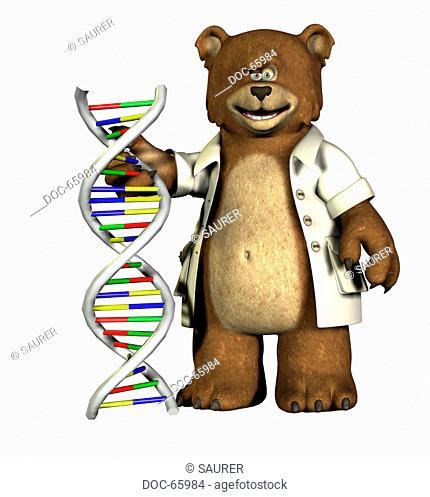 baer with DNA