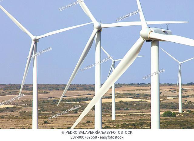 windfarm fied with blue sky in Belchite, Saragossa, Aragon, Spain