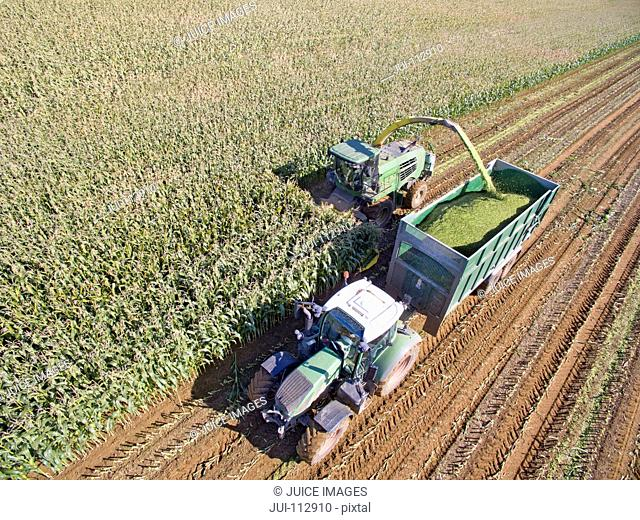 Aerial view of tractor filling trailer with harvested maize in sunny field