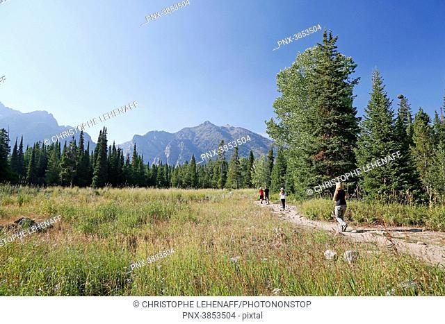 USA. Wyoming. Grand Teton National Park. Hikers to Phelps Lake