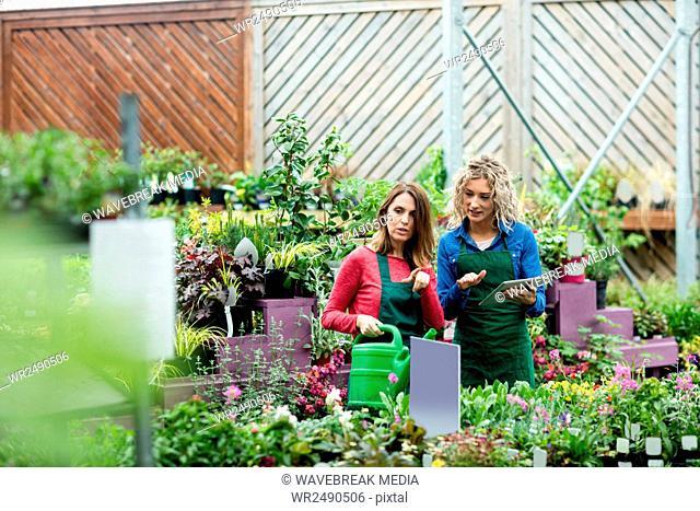 Two female florist using digital tablet