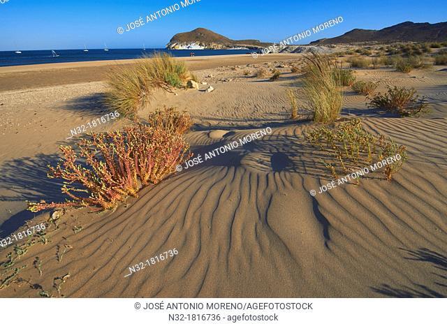 Los Genoveses beach, Genoveses Cove, Ensenada de los Genoveses, Cabo de Gata-Nijar Natural Park, Biosphere Reserve, Almeria province, Andalusia, Spain, Europe