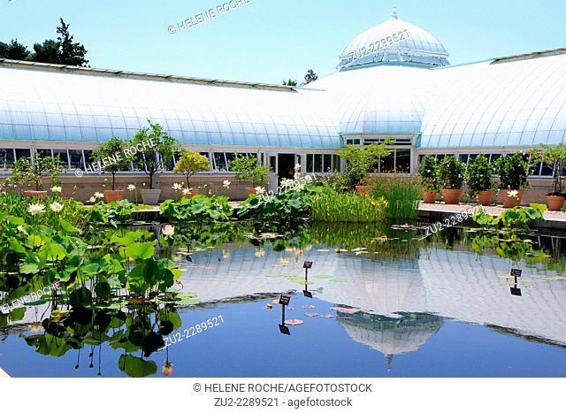 New York Botanical Garden greenhouse, Bronx, USA