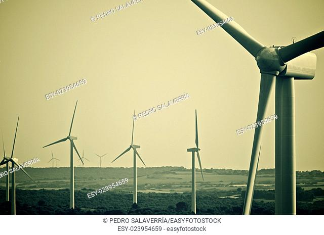 aligned group of windmills for renewable electric energy production, Zaragoza provine, Spain, Spain