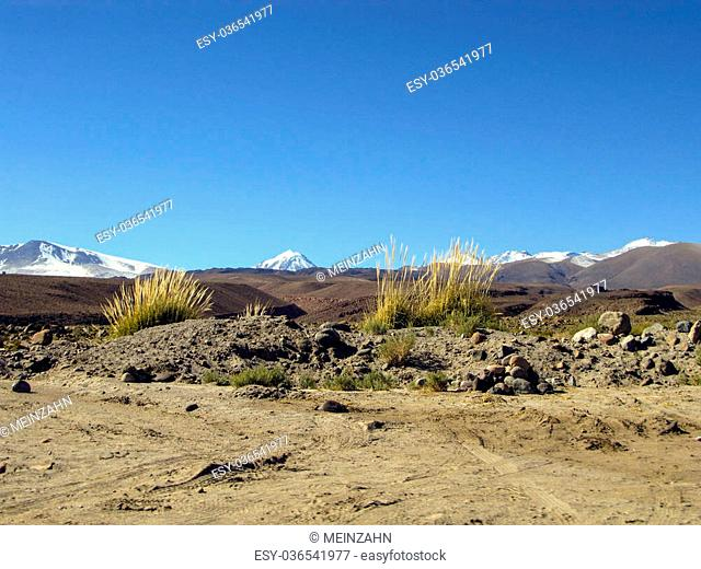 Panorama of Mountain with snow covered peaks in Atacama Desert Chile