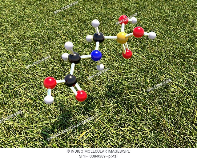 Glyphosate weed killer molecule. Computer model showing the molecular structure of a molecule of the herbicide glyphosate
