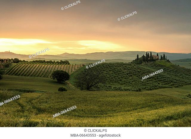Sunrise on the gentle green hills of Val d'Orcia province of Siena Tuscany Italy Europe