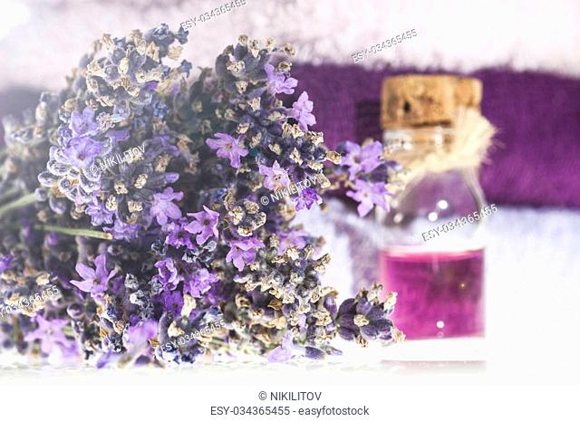 Spa background with bunch of lavender, towel and bottle with aromatherapy oil on a white background