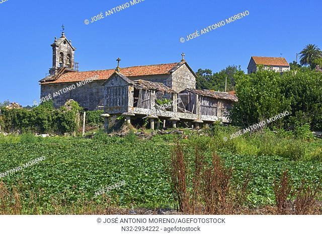 Meaño, Church, Albariño Area, Albariño Grape Vineyard, Pontevedra, Galicia, Spain