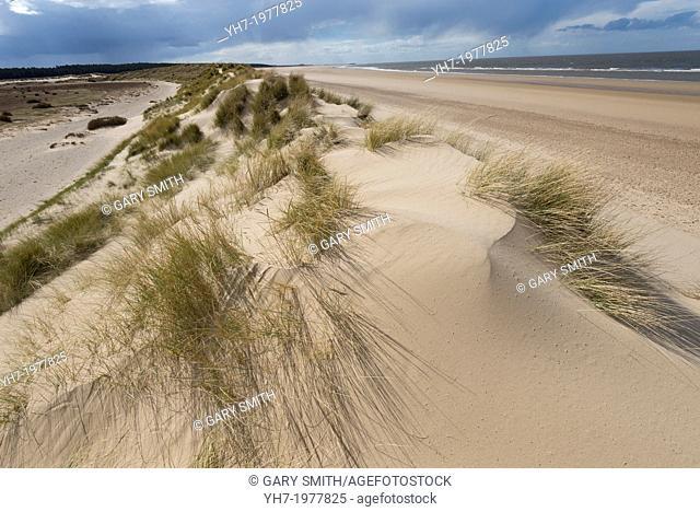 View of Holkham Sand Dunes Norfolk, England