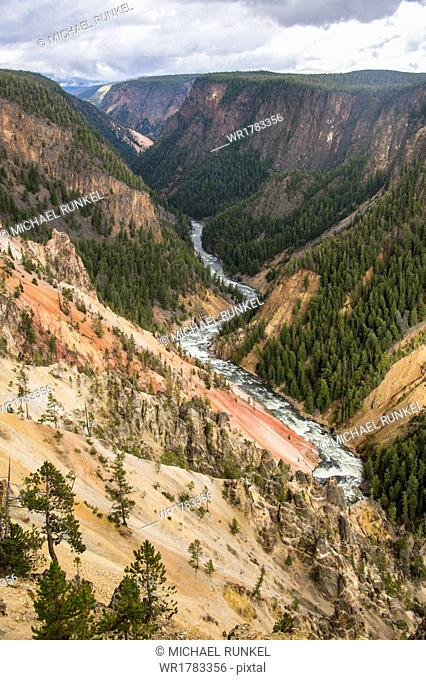 The colourful Grand Canyon of the Yellowstone, Yellowstone National Park, UNESCO World Heritage Site, Wyoming, United States of America, North America