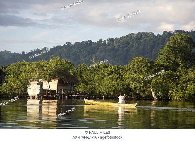 Bocas del Toro shore, Panama