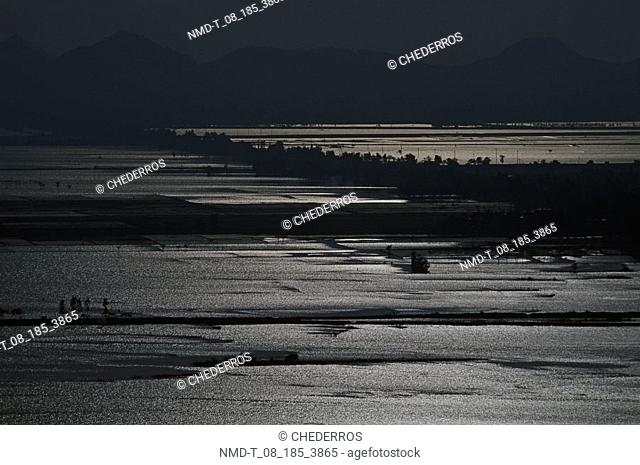 Panoramic view of a paddy field at dusk, Vietnam
