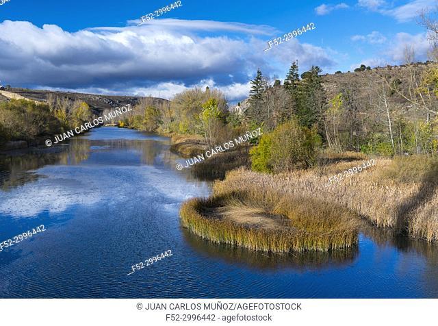 Duero river, Soria city, Soria province, Castilla y Leon, Spain, Europe