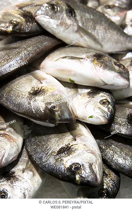 Fish at La Boqueria market, Barcelona, Catalonia, Spain