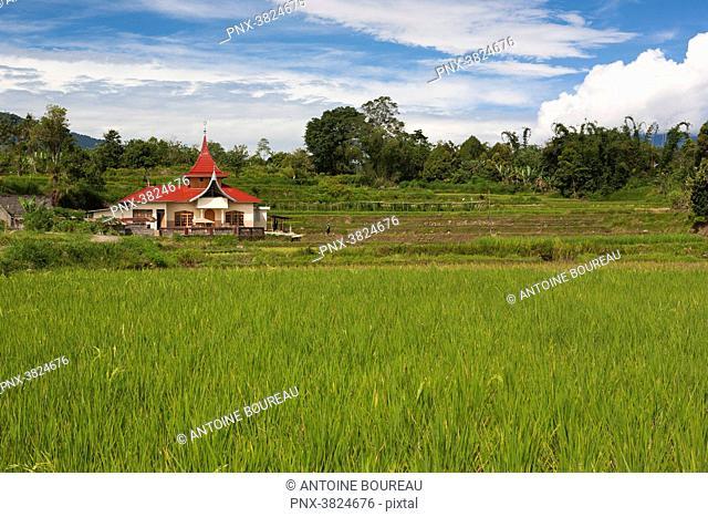 Habitation and rice field near Bukittinggi, Sumatra, Indonesia