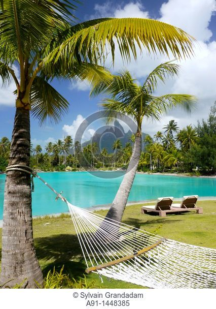 French Polynesia, Windward islands archipelago, bora bora island, Saint Regis luxury hotel and resort , hammock