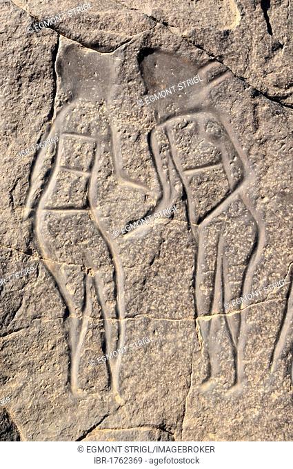Rock engraving of people, neolithic rock art of Tinterhert, Dider Valley, Tassili n'Ajjer National Park, Unesco World Heritage Site, Wilaya Illizi, Algeria