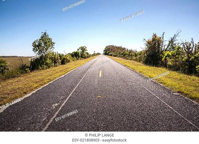 Road through the Everglades National Park in Florida, USA