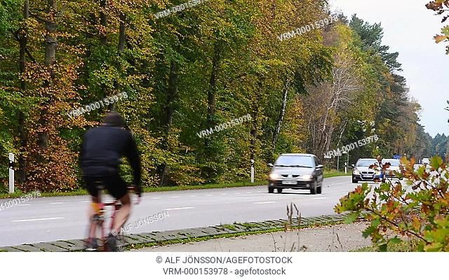 Traffic in a forest in autumn