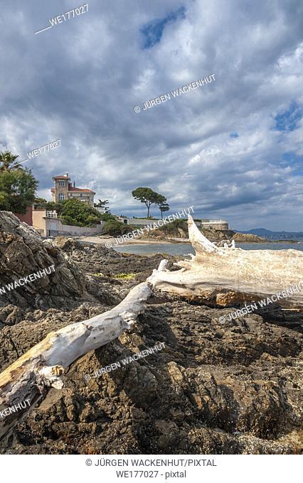 Landscape with villa on the coastal path, Saint-Aygulf, Var, Provence-Alpes-Cote d`Azur, France, Europe