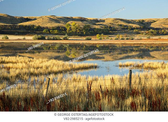 Thompson Marsh Wetland Mitigation Bank, Rosebud County, Montana