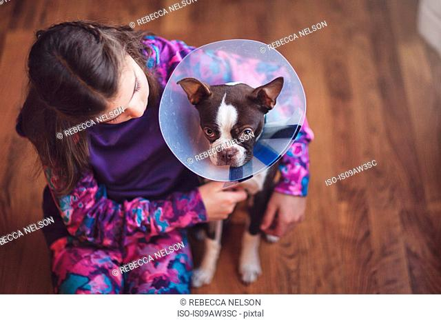 Girl comforting Boston Terrier puppy wearing pet cone