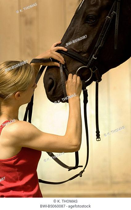 Young woman prepares her horse for riding