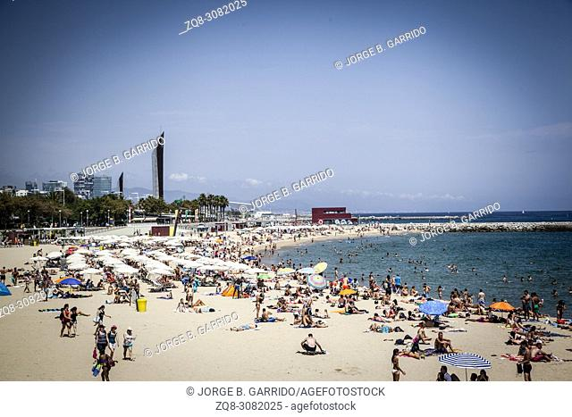 Tourists sunbathe at Barceloneta beach on a hot summer day