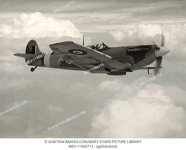 316 (Polish) Squadron Royal Air Force RAF Supermarine Spitfire 5B Flying Enroute with Clipped-Wing