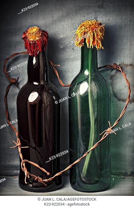 Bottles with dried flowers