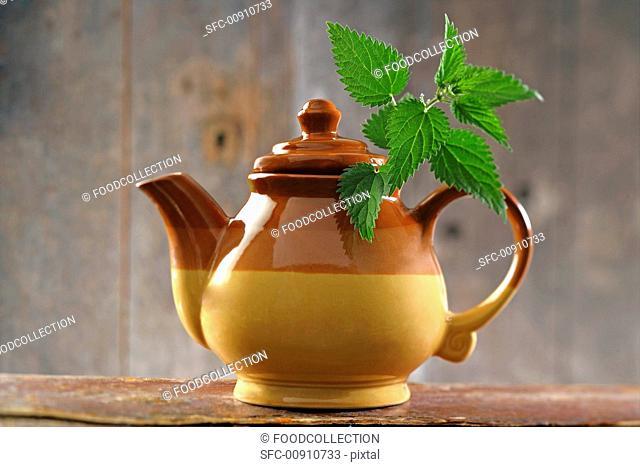 A pot of nettle tea