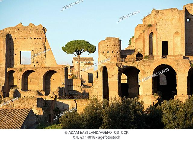 Rome. Italy. Ruins of the Palace of Septimius Severus on the Palatine hill