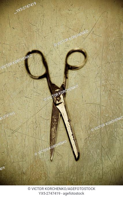 old scissors on plain background