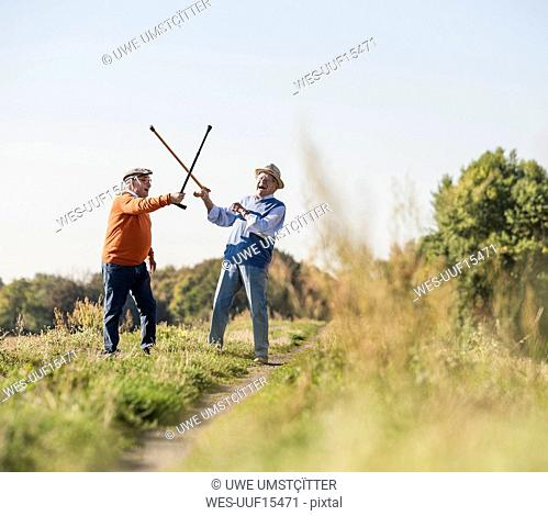 Two old friends fencing in the fields with their walking sticks