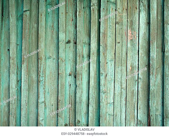 Detail of the old fence from wooden planks covered with green paint peeling off