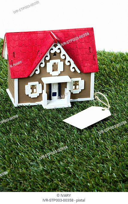 House Model With Tag
