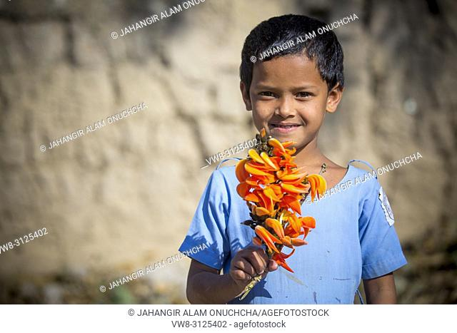 Bangladeshi school boy enjoying with spring flower of palash. Butea monosperma is a species of Butea native to tropical and sub-tropical parts of the Indian...