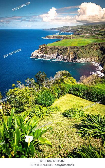 Green island in the Atlantic Ocean, Sao Miguel, Azores, Portugal