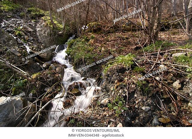 Stream located in Pella. Pella, Vergina, Macedonia, Greece, Europe