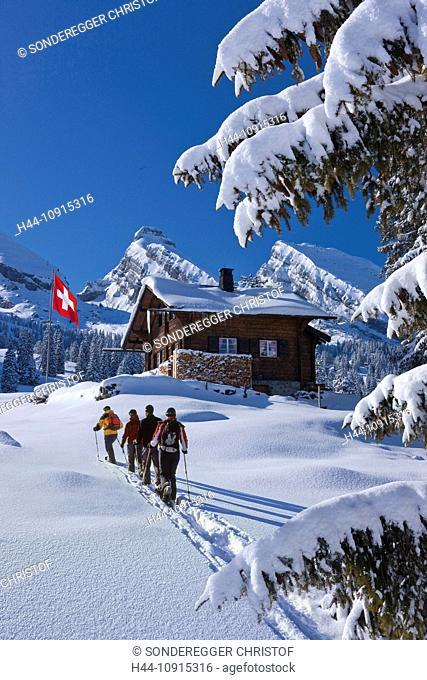 Flag, flags, Swiss flag, hut, mountain house, alp hut, mountain, mountains, winter, snow, canton, St. Gallen, St. Gall, Switzerland, Europe, Toggenburg, tree