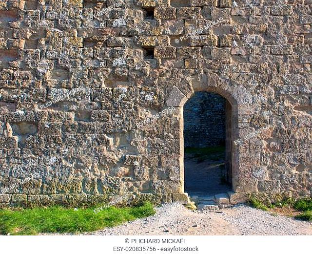 Medieval wall with a door
