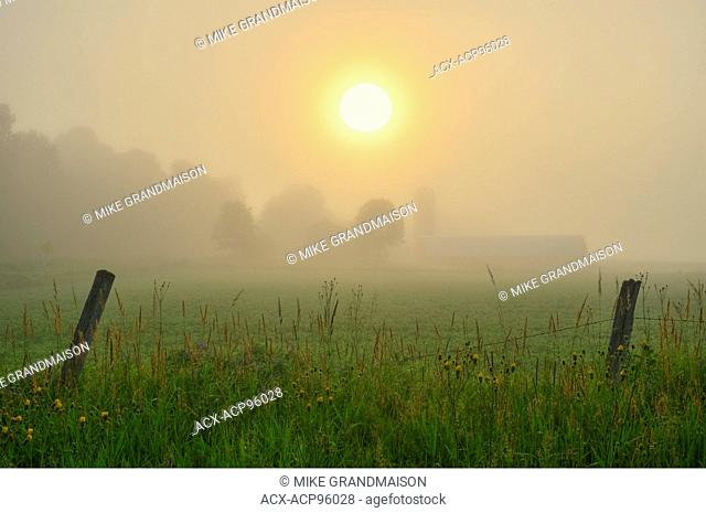 farm at sunrise in fog Bourget Ontario Canada