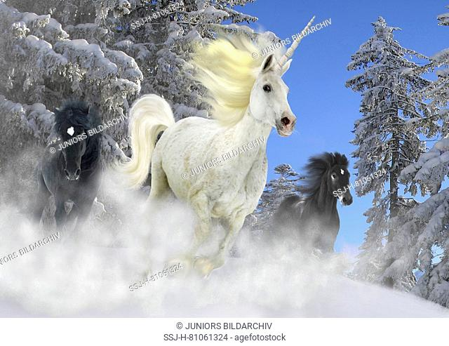 Unicorn, grey, galopping in front of two horses through the snow, digital composition